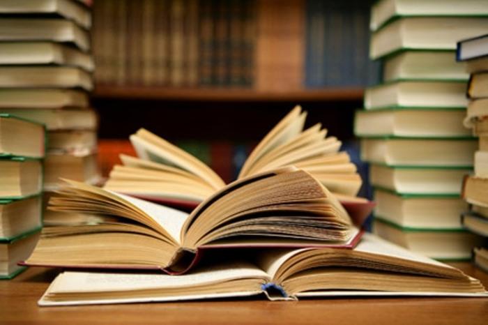 biblioteca31