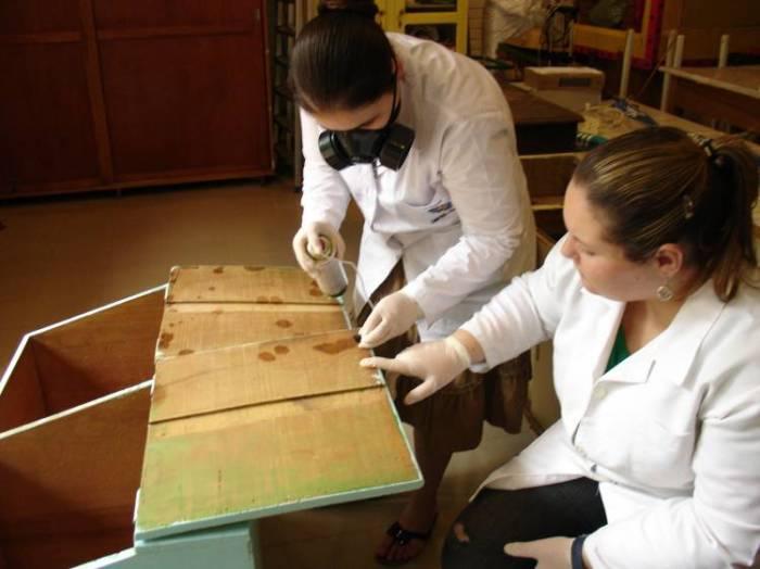 imagen museologiaufpel.wordpress.com